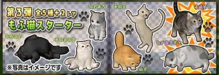 もふ猫スターター